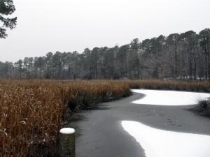 winter-036