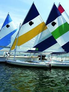 shoreline-selling-sunfish-sailing