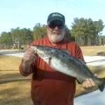 Bill trout