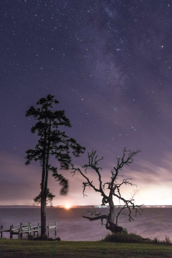 two trees on a starry night with the neuse river and a dock in the background