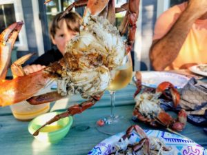 Little boy holding up a blue crab caught in the Neuse River.