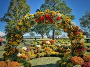 New Bern, NC Mumfest flower arch.