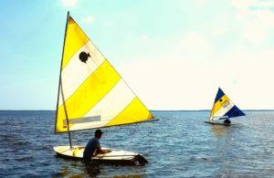 sunfish sailboats on the Neuse River