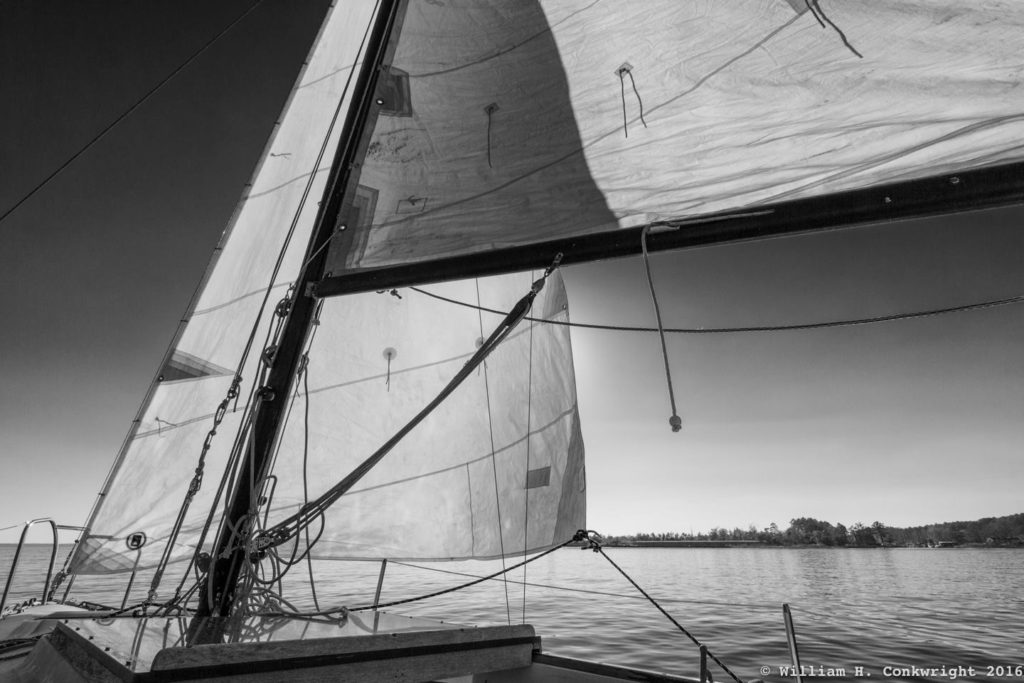 Black and white sailboat sail. Photography by Will Conkwright.