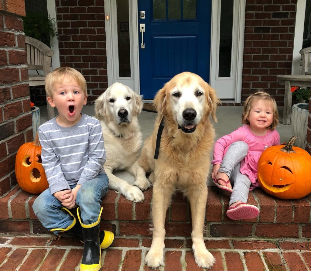 pet of the month, dogs and kids