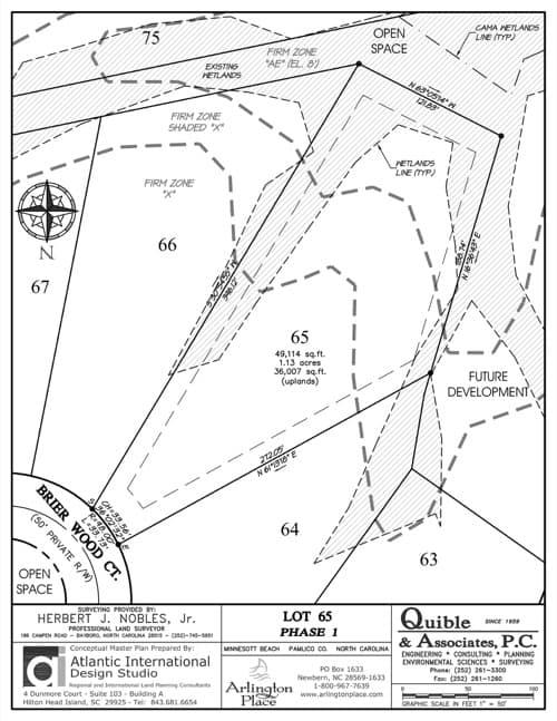 Arlington Place homesite 65 plat map.