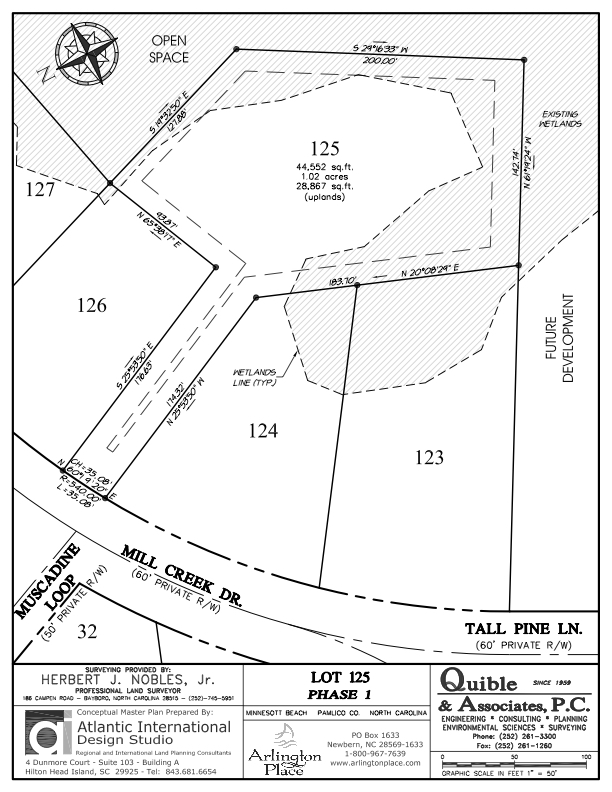 Arlington Place Homesite 125 property plat map image.