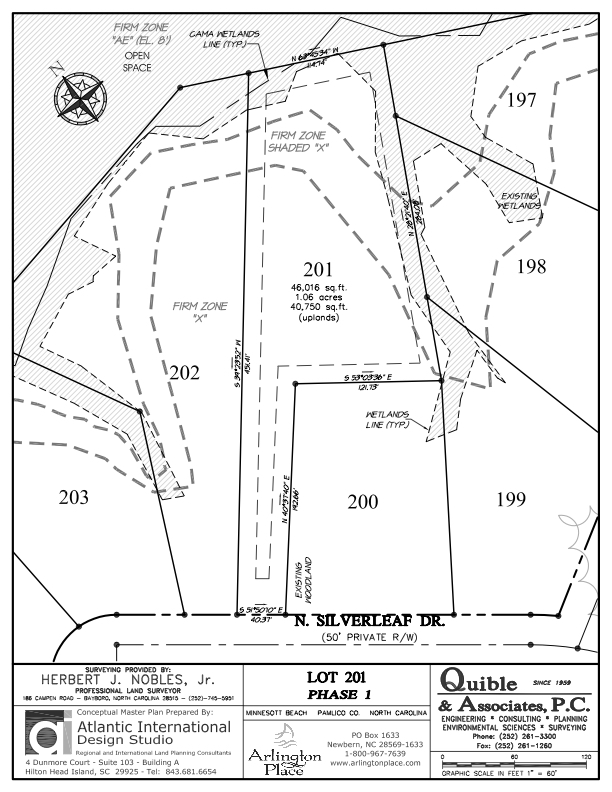 Arlington Place Homesite 201 property plat map image.