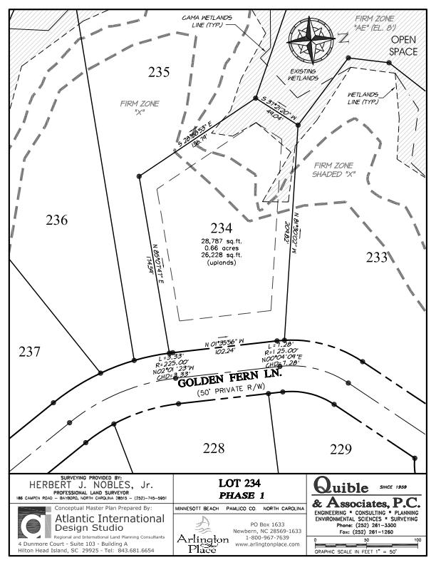 Arlington Place Homesite 234 property plat map image.